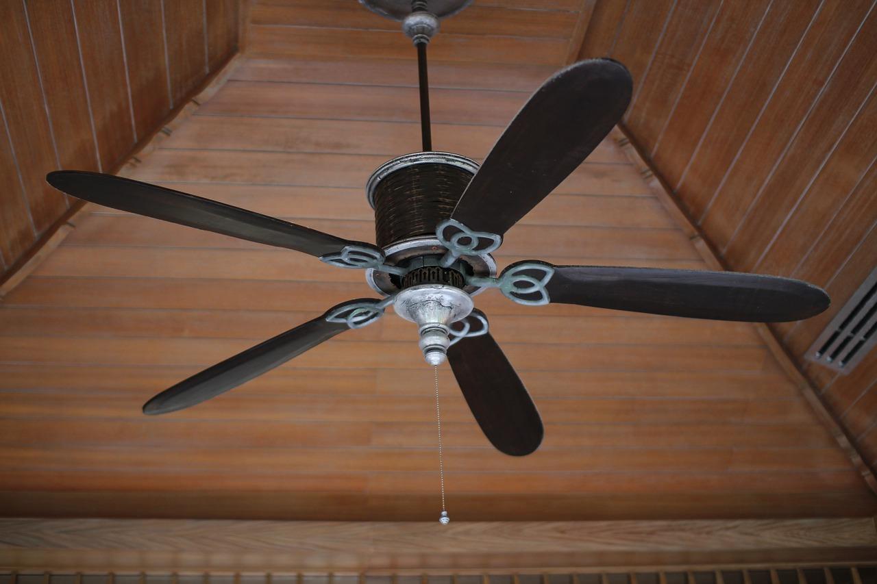 扇風機とサーキュレーターの違いは?用途や効果的な使い分け方をご紹介!